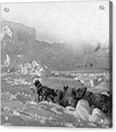 Ziegler Polar Expedition Acrylic Print