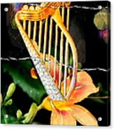Zing Went The Strings Acrylic Print
