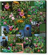 Zinnias Collage Square Acrylic Print