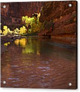Zion Canyon Of The Virgin River Acrylic Print