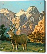 Zioncountry Muleys Acrylic Print