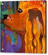 Zippy Dog Art Acrylic Print by Blenda Studio
