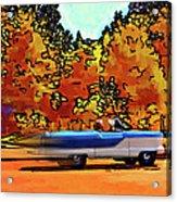 Zoom Zoom Acrylic Print