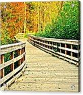 Zoom Zoom Walking Path Acrylic Print