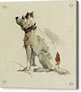 A Terrier - Sitting Facing Left Acrylic Print by Peter de Wint