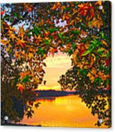 Autumn Leaves A View Acrylic Print