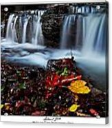 Autumnal Falls Acrylic Print