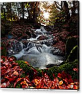 Falls In The Fall Acrylic Print