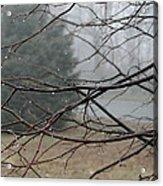 Fog Hangs Heavy Acrylic Print