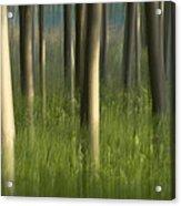 Green Alameda  Acrylic Print