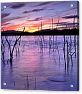 Purple Lake  Acrylic Print