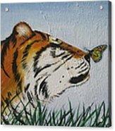 '' Tiger Colors'' Acrylic Print