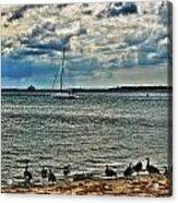 001 On A Summers Day  Erie Basin Marina Summer Series Acrylic Print