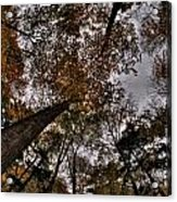 0014 Letchworth State Park Series Acrylic Print