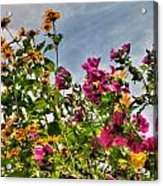004 Summer Air Series Acrylic Print