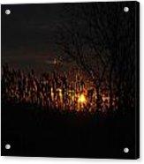 03 Sunset Acrylic Print