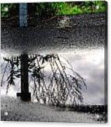 05 Reflecting Acrylic Print