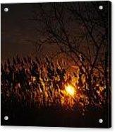 06 Sunset Acrylic Print