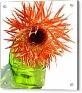 0690c-015 Acrylic Print