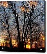 07 Sunset Acrylic Print