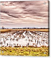 0704-8703 Winter Clouds At Holla Bend Wildlife Refuge Acrylic Print