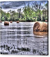 0804-3586 Flooded Hay Acrylic Print by Randy Forrester