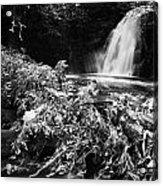 Gleno Or Glenoe Waterfall Beauty Spot County Antrim Northern Ireland Acrylic Print by Joe Fox