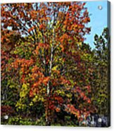 A Country Place Acrylic Print
