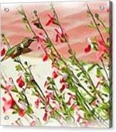 A Garden Delight Acrylic Print