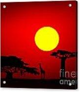 Africa Sunset Acrylic Print