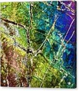 Amphibole Mineral, Light Micrograph Acrylic Print