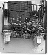 Artisan's Balcony Acrylic Print by Gordon Wood