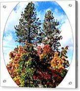 Autumn Beginnings Acrylic Print