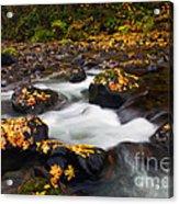 Autumn Passing Acrylic Print