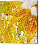 Autumn Snow  Acrylic Print by James BO  Insogna