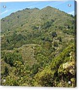 Beautiful Mount Tamalpais Acrylic Print