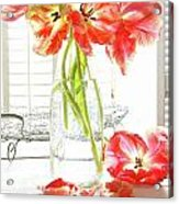 Beautiful Tulips In Old Milk Bottle  Acrylic Print by Sandra Cunningham