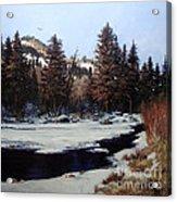Beaver Creek Acrylic Print by W  Scott Fenton