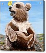 Ben Bear And Butterfly Acrylic Print