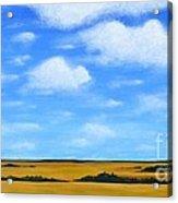 Big Sky Prairie Acrylic Print by Holly Donohoe