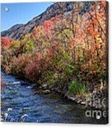 Blacksmith Fork River In The Fall - Utah Acrylic Print