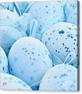 Blue Easter Eggs Acrylic Print by Elena Elisseeva