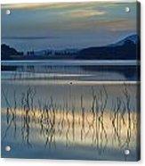 Blue Lake Acrylic Print