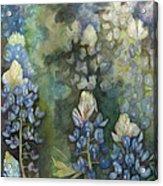 Bluebonnet Blessing Acrylic Print
