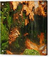 Caldeira Velha Park Acrylic Print