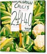 Cauliflower Acrylic Print by Tom Gowanlock