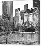 Central Park Acrylic Print