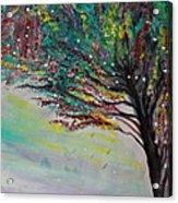 Change Of Falls' Sparkle Acrylic Print