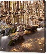Cibolo Creek Acrylic Print by Paul Huchton