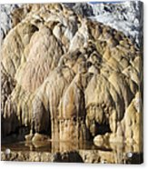 Cleopatra Terrace, Mammoth Hot Springs Acrylic Print